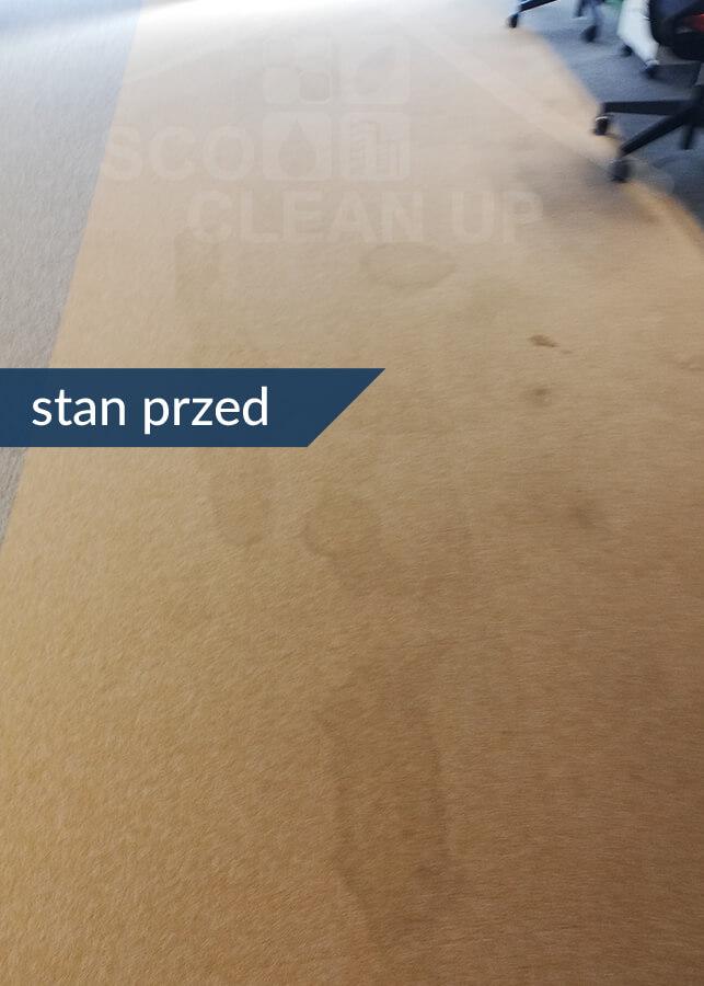 cennik czyszczenia dywanow i wykladzin stan przed praca